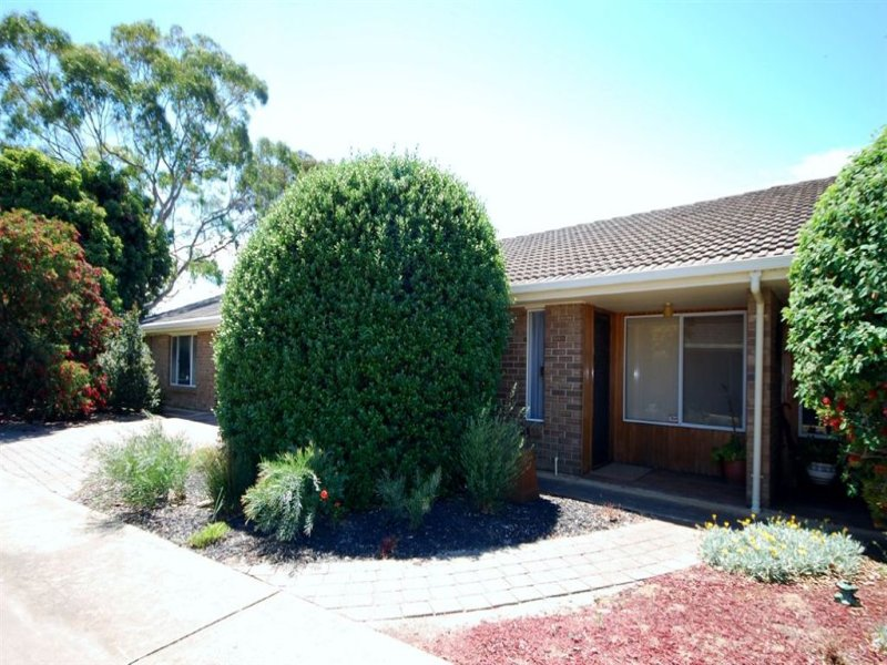2/42 Torrens Avenue, West Hindmarsh, SA 5007