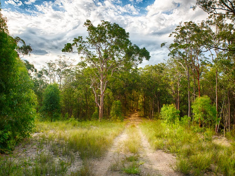 Lot 107, Duns Creek Road, Duns Creek, NSW 2321