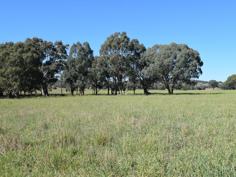 Little Plains Road, Blakney Creek, NSW 2581