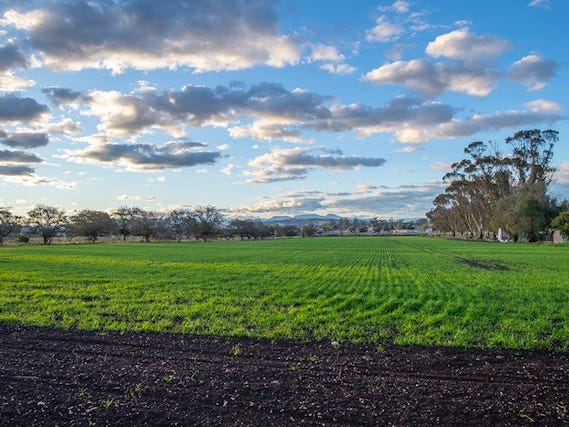 80 Moobi Road, Scone, NSW 2337