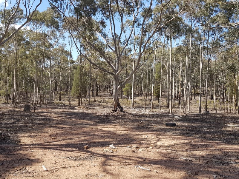 538-735 Laheys Creek Road, Mudgee, NSW 2850