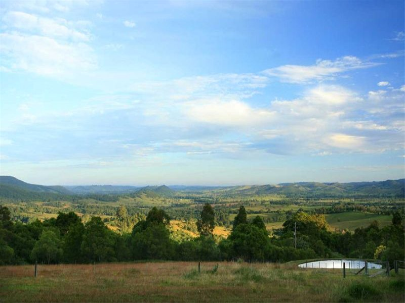 243 Wangat Trig Road, Bandon Grove, NSW 2420