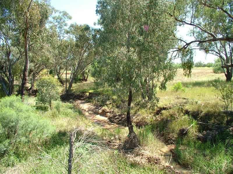 Boonabirra Castlereagh Highway, Mendooran, NSW 2842