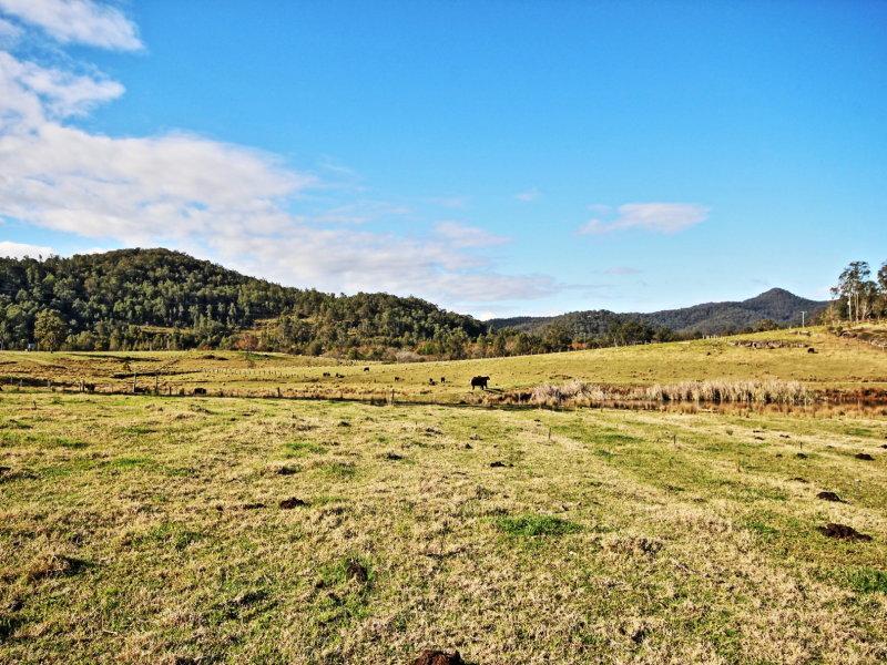 92 Yango Creek Road, Wollombi, NSW 2325