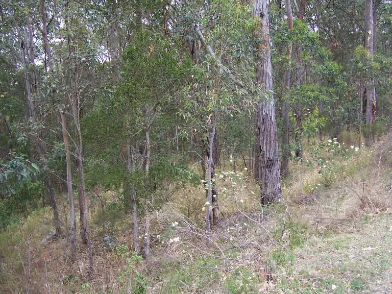 Lot 18, DP 1098869 Uffington Road, Duns Creek, NSW 2321