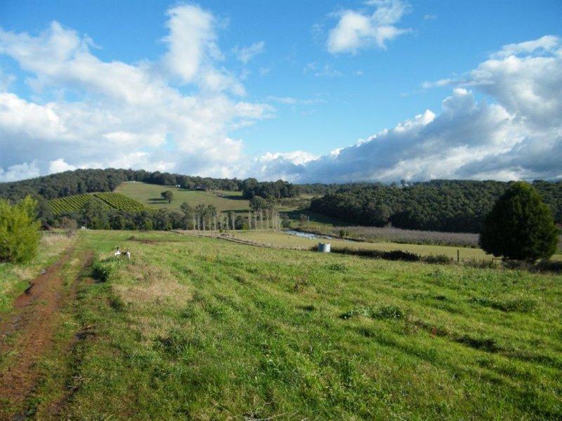 700 Lusatia Park Road, Hoddles Creek, Vic 3139