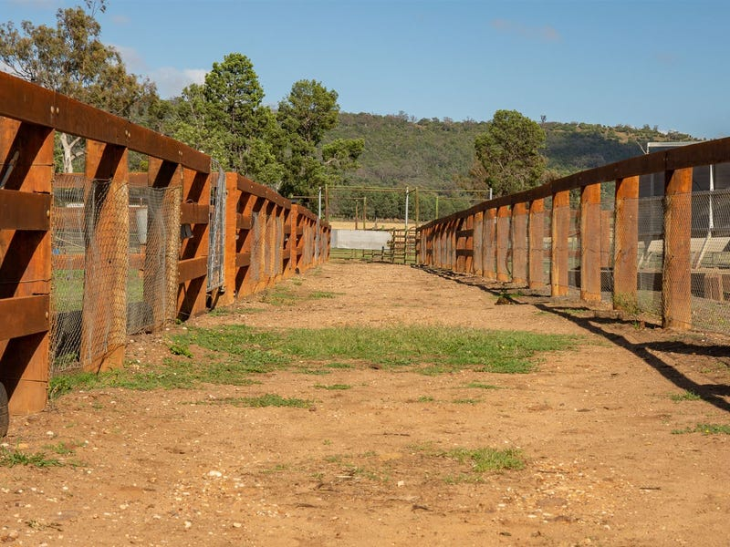 167 Mooki Springs Road, Pine Ridge, NSW 2343