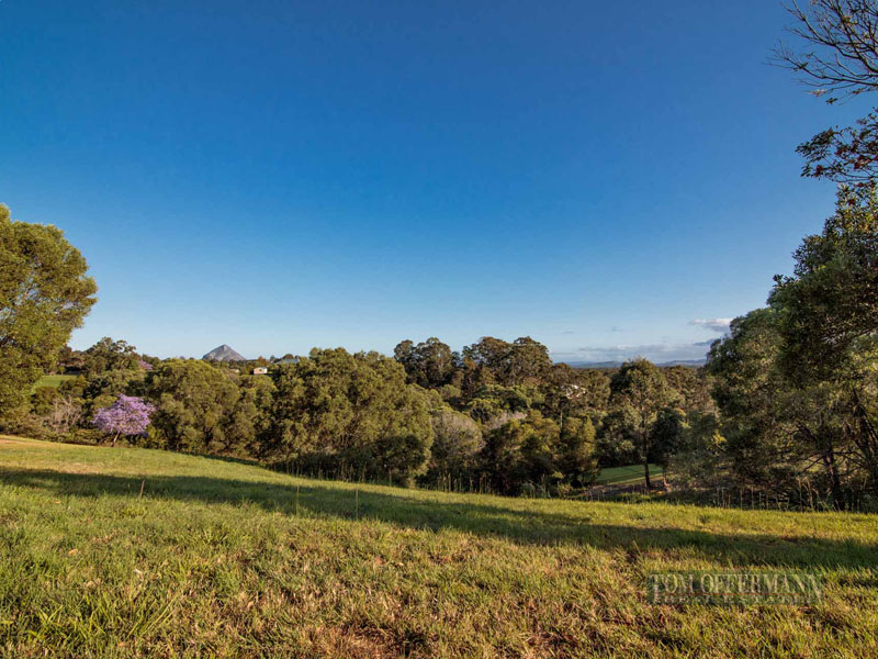 205 Blueberry Drive, Cooroy, Qld 4563