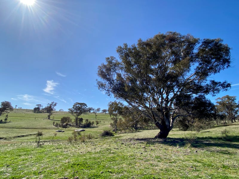 Lot 132, 1488 Mutton Falls Road, O'Connell, NSW 2795