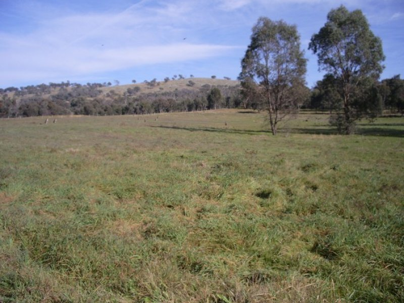 44 Rathmells Lane, Cootamundra, NSW 2590