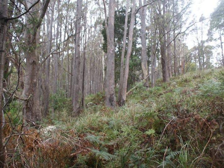 0 Farrells Road, Reedy Marsh, Tas 7304