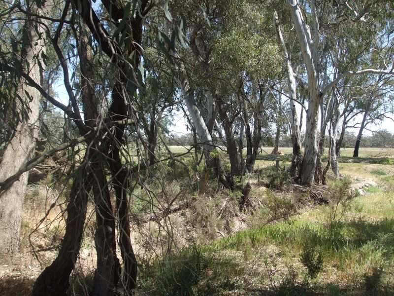 Lot,91C Section E Hipwell Road, Gunbower, Vic 3566
