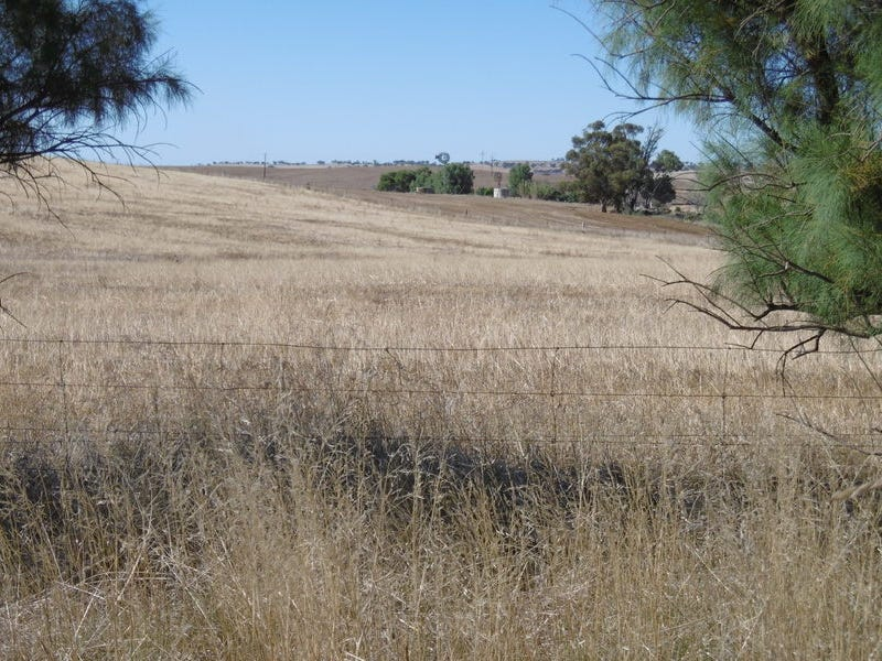 Lot 54 Horrocks Highway, Murray Town, SA 5481