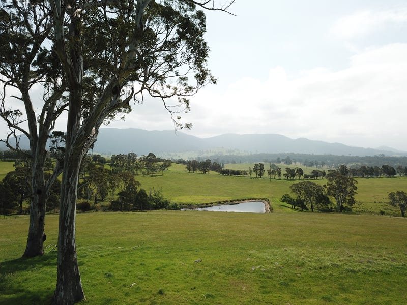 10972 Princes Hwy, Cobargo, NSW 2550