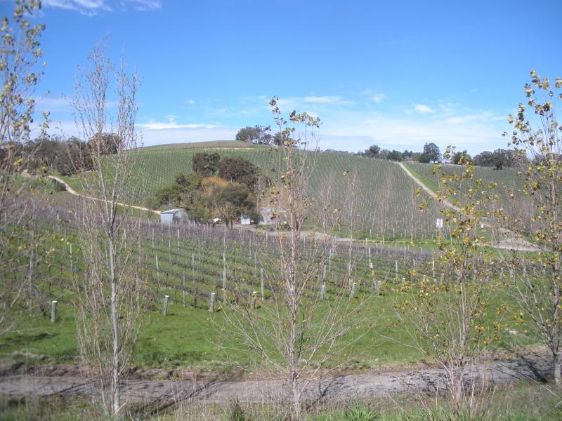 Talc Hill Vineyard Coleman Road, Gumeracha, SA 5233