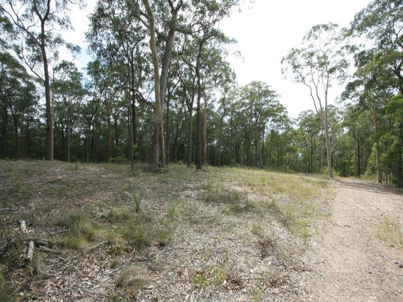 Lot 25, Uffington Road, Duns Creek, NSW 2321