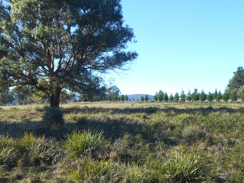 Lot 4 3386 Nugent Road, Buckland, Tas 7190