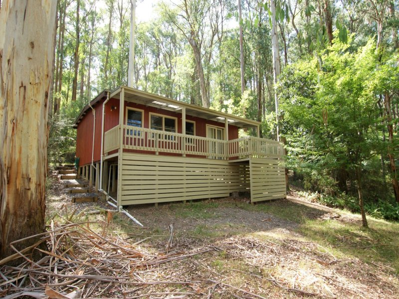 19 Fisherman Drive, Reefton, Vic 3799