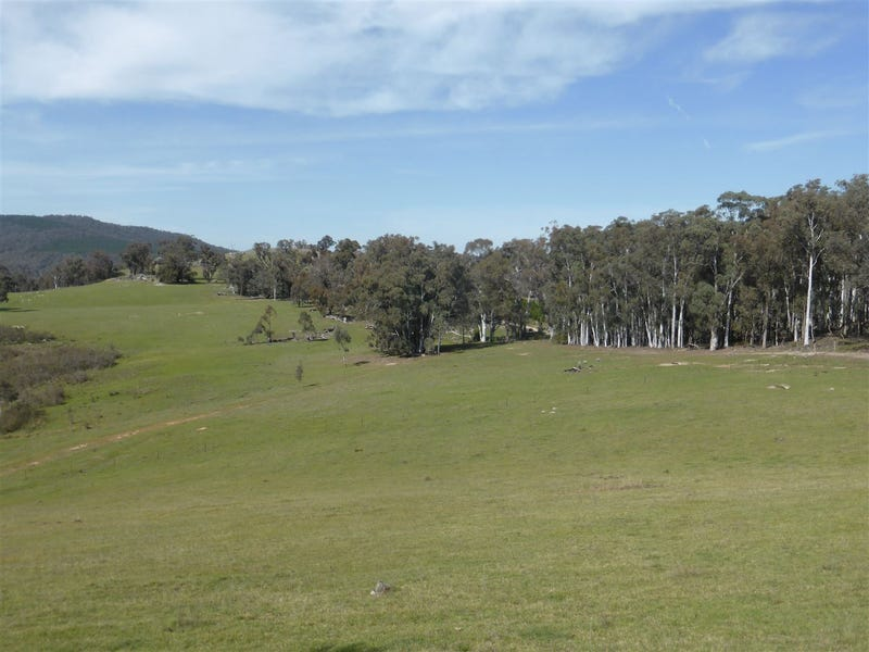3012 Jingellic Road, Lankeys Creek, Holbrook, NSW 2644