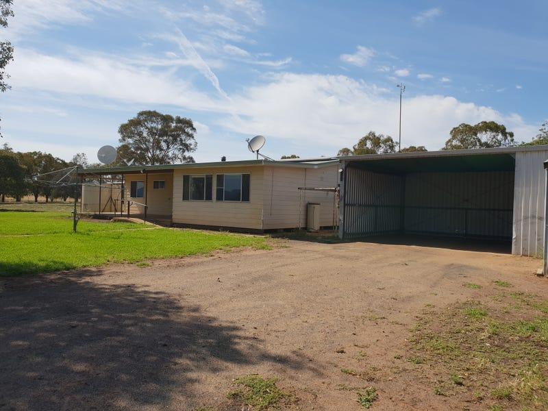 Wilma, Tooraweenah, NSW 2817