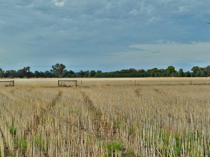 Lot 3 Cornishtown Road, Rutherglen, Vic 3685