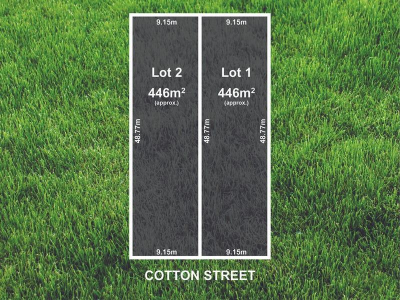 38 Cotton Street, Fairview Park, SA 5126