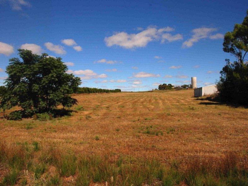 Lt 100 and 101 Loxton Drive, Moorook, SA 5332