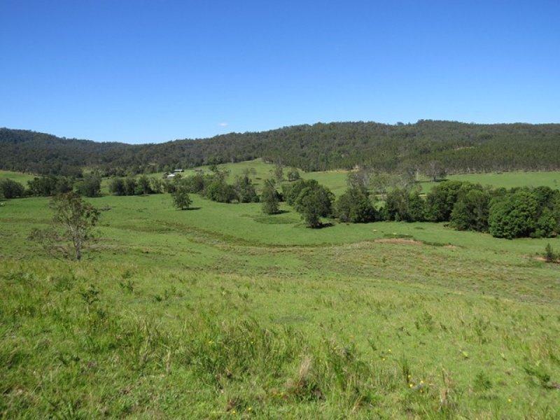 2788 Kangaroo Creek Rd, Kangaroo Creek, NSW 2460