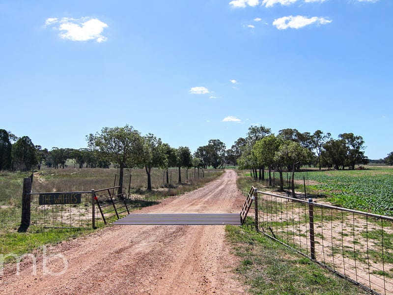 966 Peak Hill Road, Baldry, NSW 2867