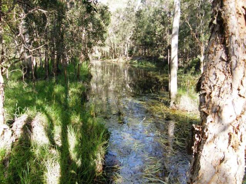 4873 Orara Way, Braunstone, NSW 2460