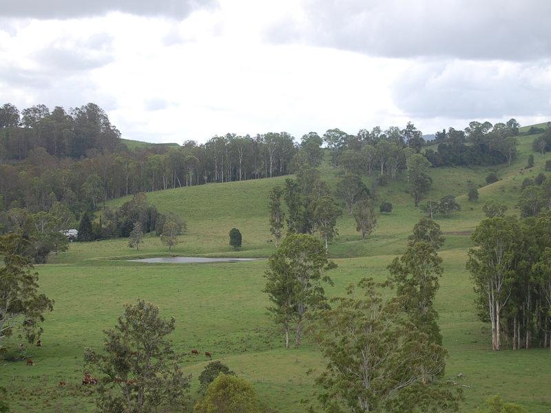 'Green Park', Mallanganee, NSW 2469