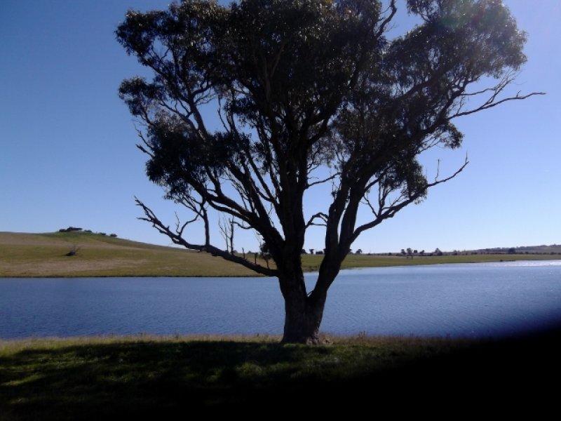 0 Carcoar Dam Road, Blayney, NSW 2799