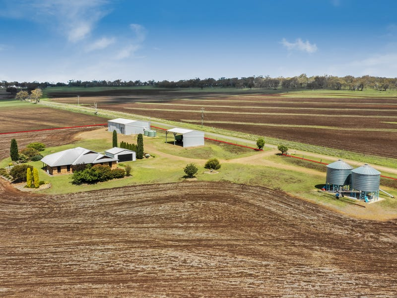 491 Forest Springs Road, Spring Creek, Qld 4361
