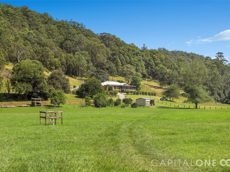276 Brush Creek Road, Cedar Brush Creek, NSW 2259