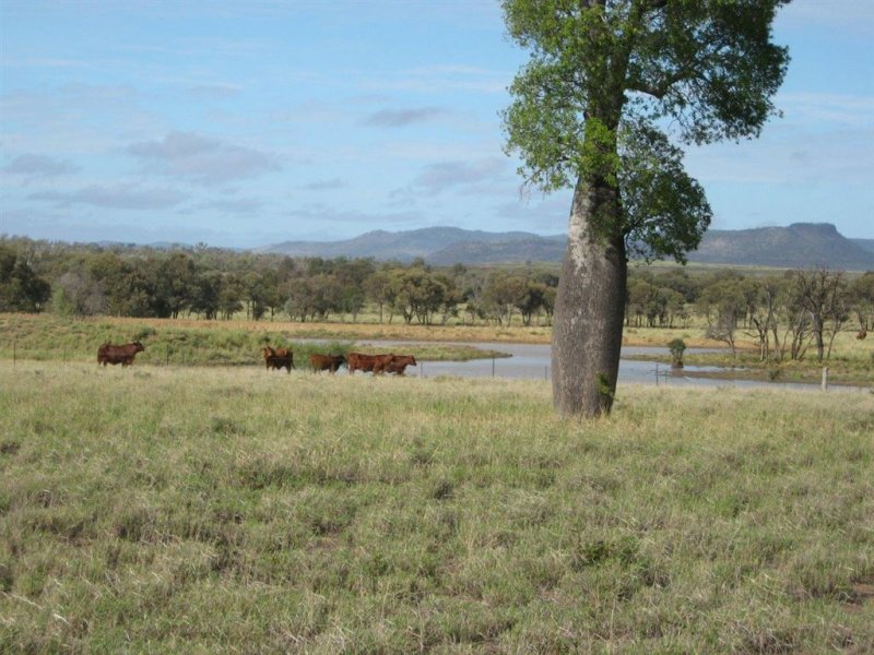 """ Crystal Plains"", Springsure, Qld 4722"