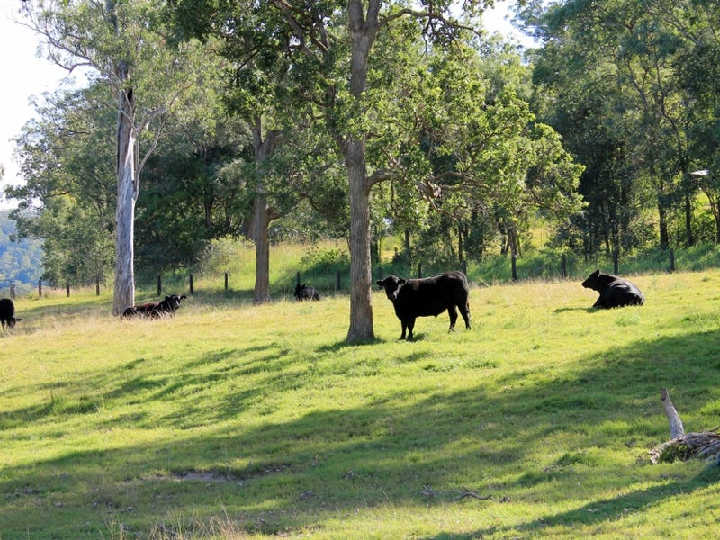 Lot2 Old Cob O Corn Road, Kyogle, NSW 2474