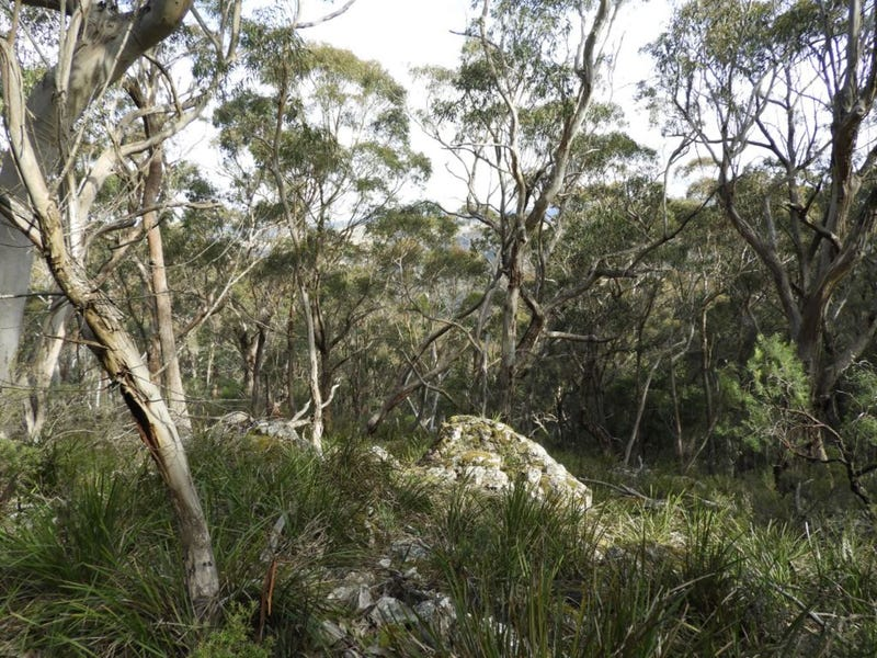 528 530 Mares Forest Road, Wombeyan Caves, NSW 2580