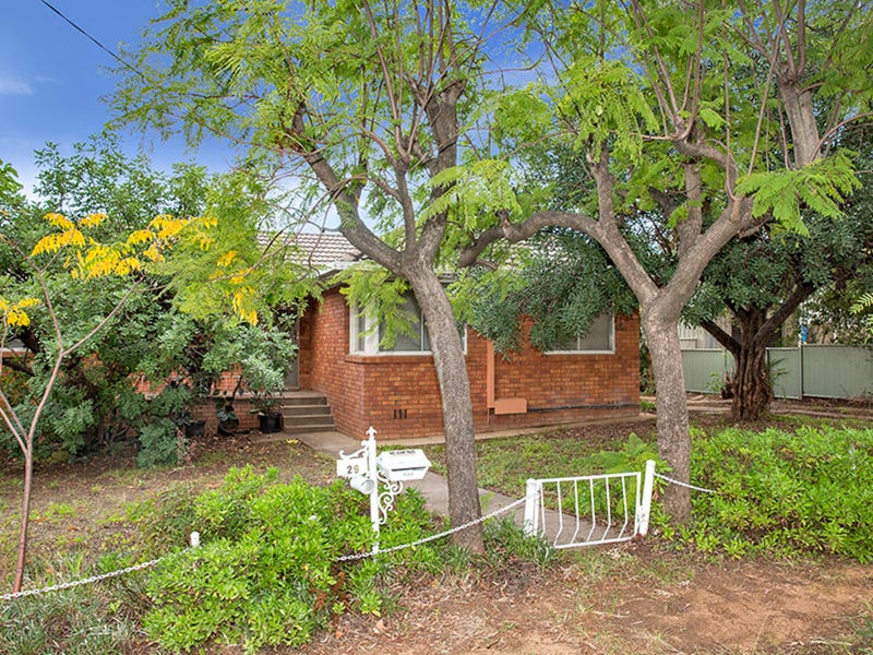 29 David Street, Tamworth, NSW 2340