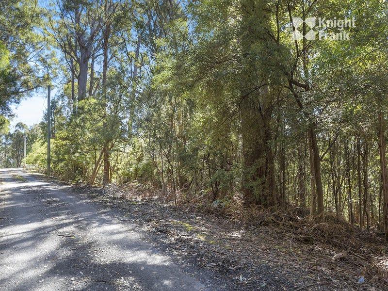 12 Reids Road, Fern Tree, Tas 7054