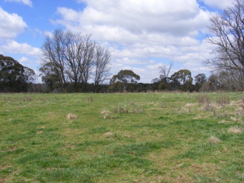 Ben Lomond Road, Llangothlin, NSW 2365