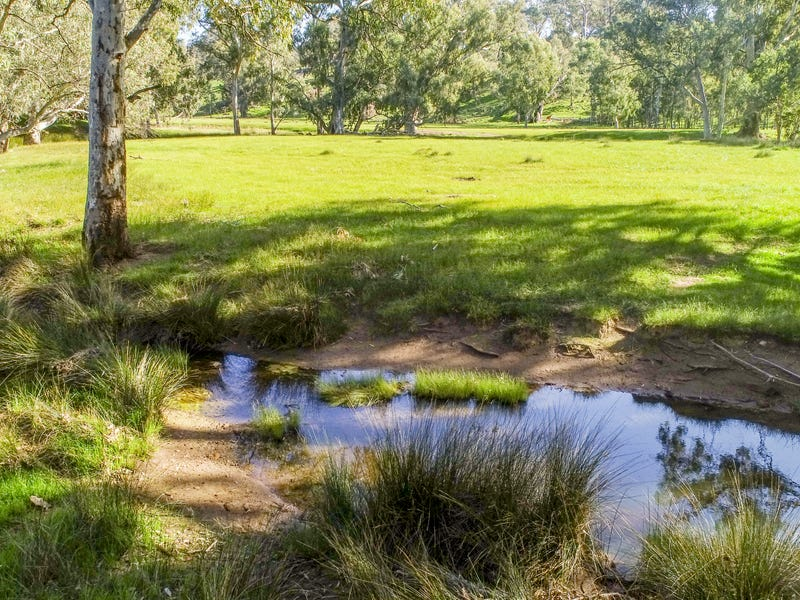 Sections 365 & 366 Survey Road, Melrose, SA 5483