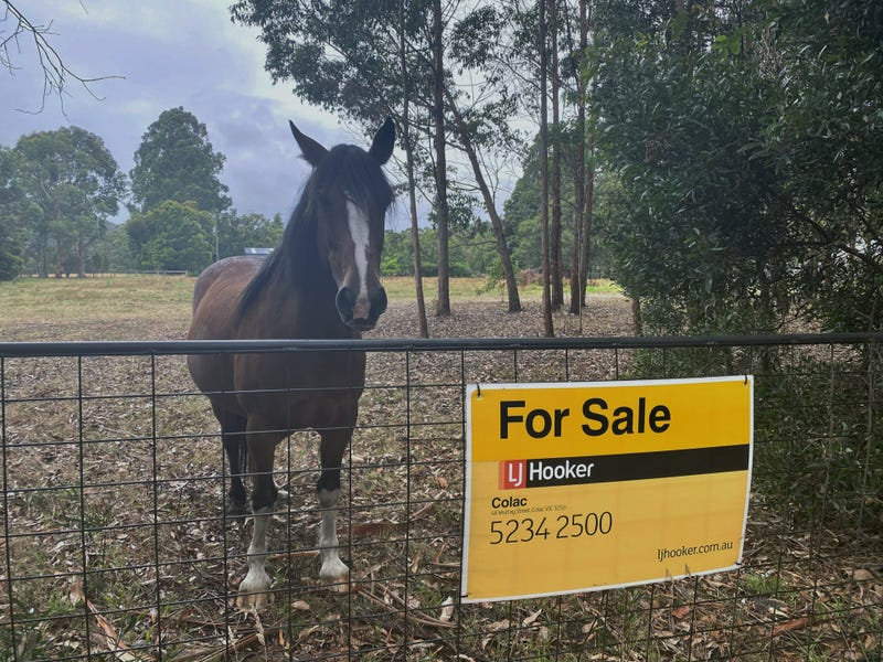 145 Old Beech Forest Road, Gellibrand, Vic 3239