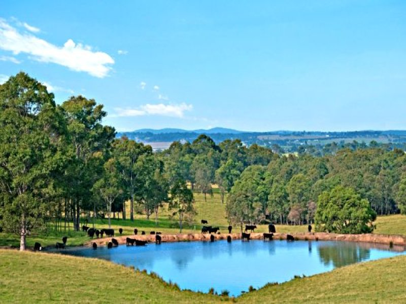Lot 5/449 Tocal Rd, Maitland, NSW 2320