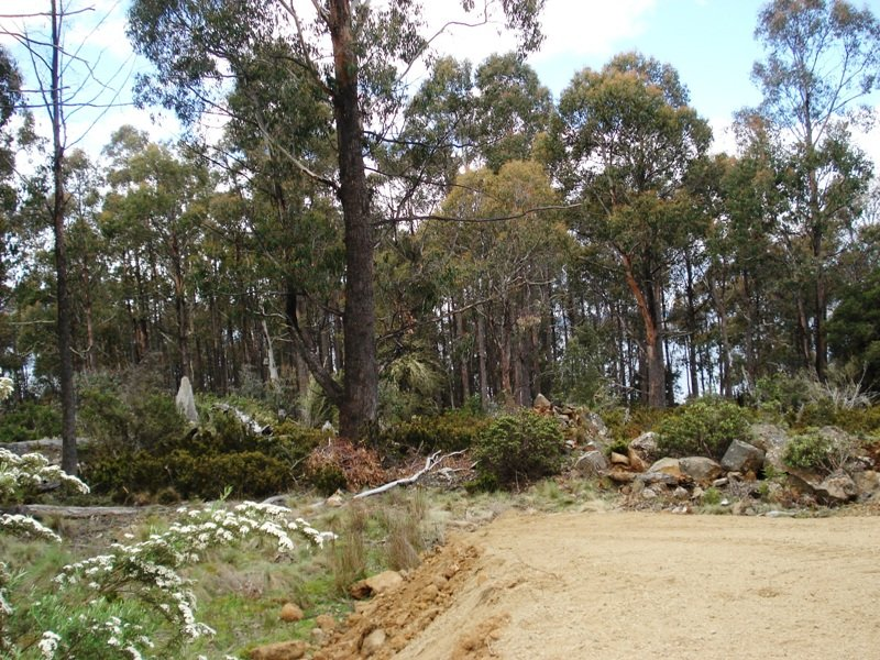 Lot 2 Arthurs Lake Road, Wilburville, Wilburville, Tas 7030