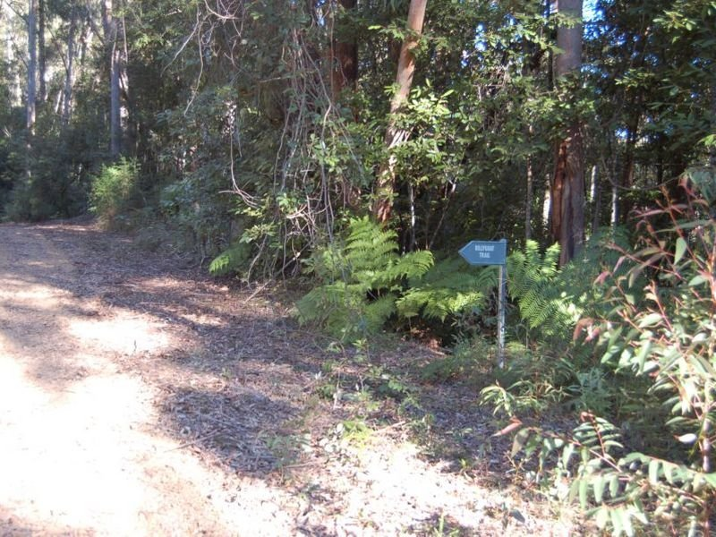 Lot 34 & 36 Upper Buckrabenndinni, Bowraville, NSW 2449