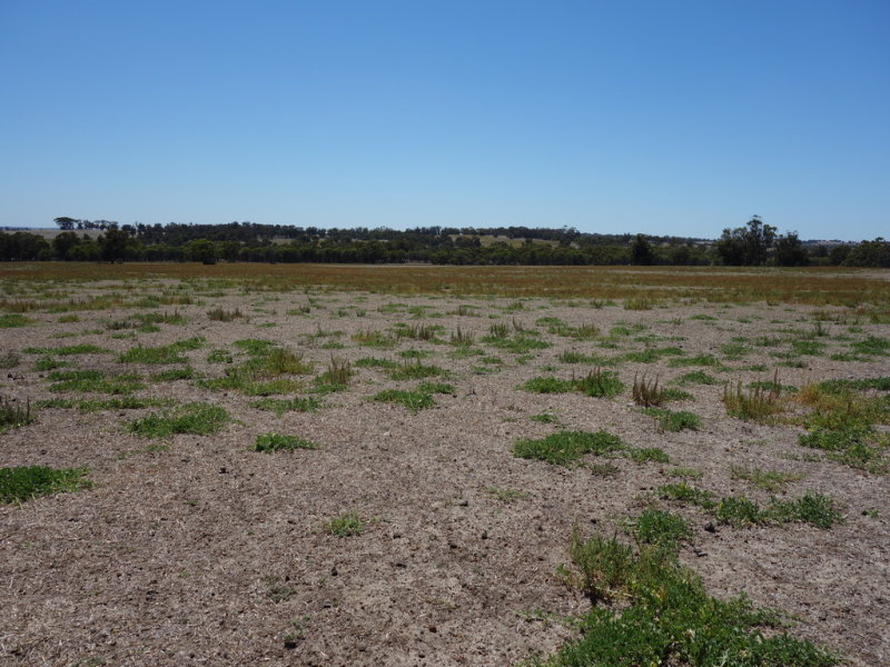 Lot 3837 Spriggs Fraser Road, Wagin, WA 6315