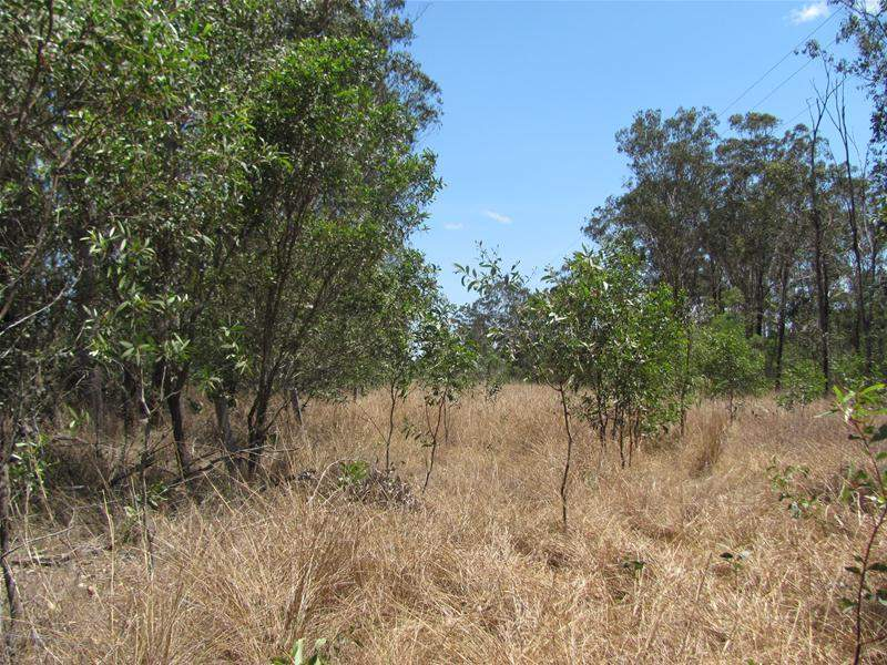 Lot 3/ Oyster Creek Road, Oyster Creek, Qld 4674
