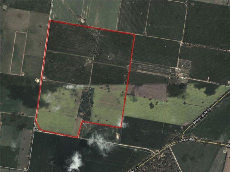 Lot 42 Scholz Road, Walla Walla, NSW 2659