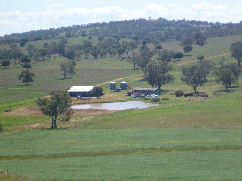 Cradle Valley P 1421 Lower Somerton rd, Attunga, NSW 2345