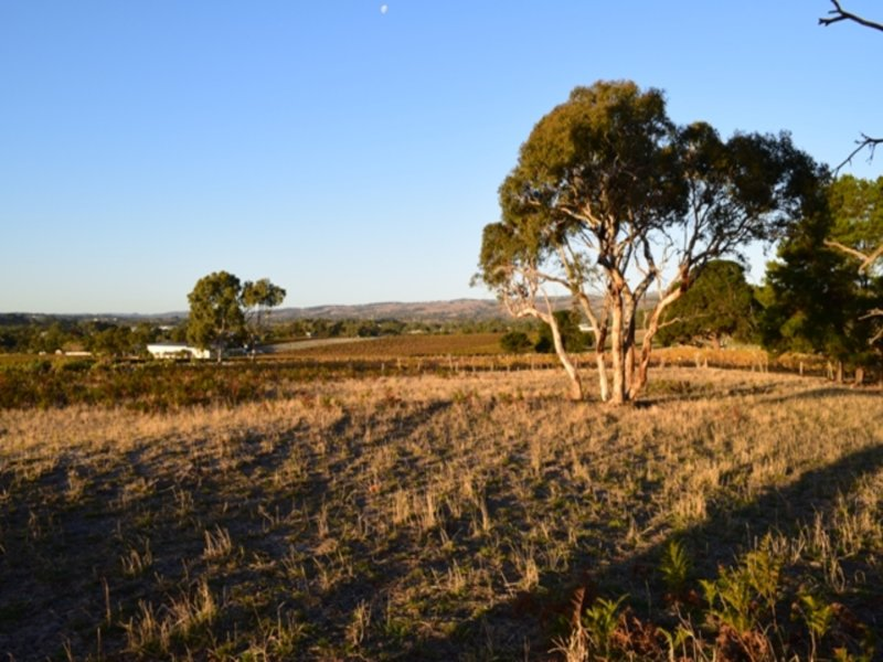 Lot 1 Hunt Road, McLaren Flat, SA 5171